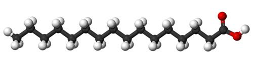 Пальмитиновая (насыщенная) кислота - одна из самых распространённых жирных кислот в природе