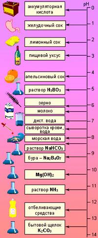 Кислотность различных жидкостей